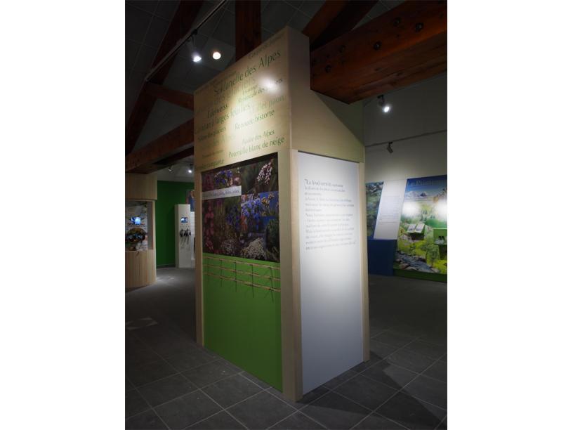 Les Edelweiss : Maison de la Vanoise centre-edelweiss-vacance_00419981-.jpg