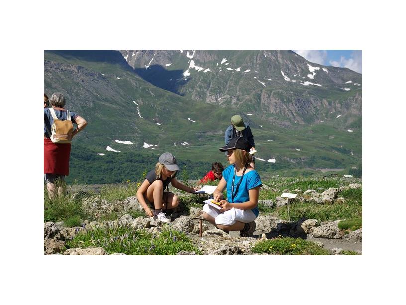 Les Edelweiss : Jardin Alpin du Mont-Cenis centre-edelweiss-vacance_18830442-.jpg