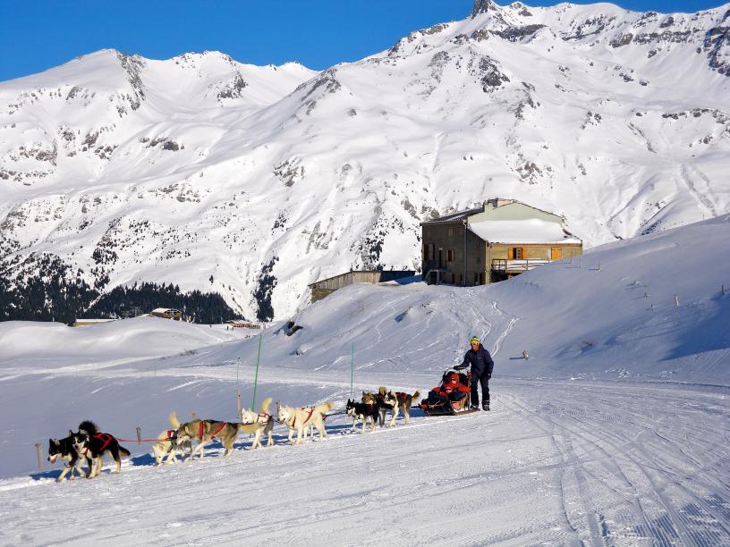 Centre Les Edelweiss_Val Cenis Lanslebourg_Chiens de traineaux