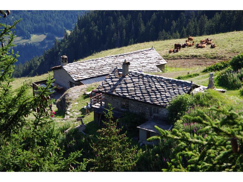 Les Edelweiss : Nuit en Refuge d'Altitude (Cuchet) centre-edelweiss-vacance_35522850-.JPG