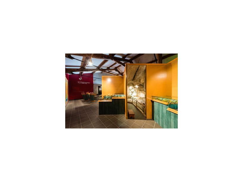 Les Edelweiss : Musée Archéologique centre-edelweiss-vacance_43925073-.jpg