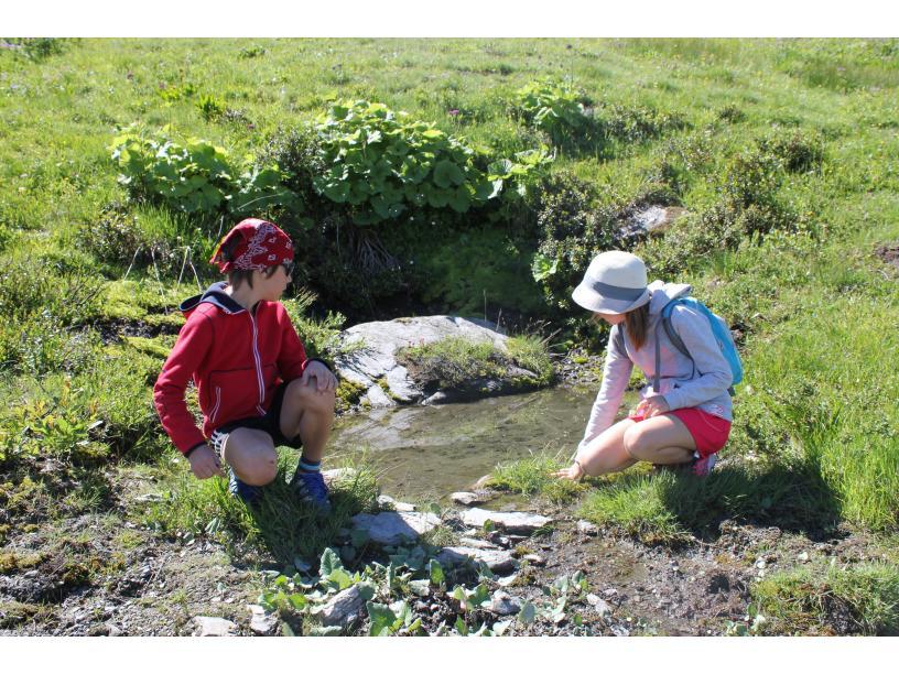 Les Edelweiss : Randonnée centre-edelweiss-vacance_50452883-.JPG