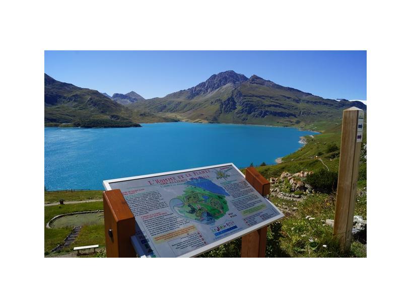 Les Edelweiss : Jardin Alpin du Mont-Cenis centre-edelweiss-vacance_54951682-.jpg