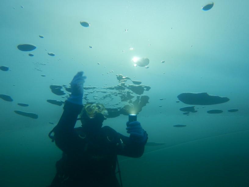 Les Edelweiss : Plongée sous glace