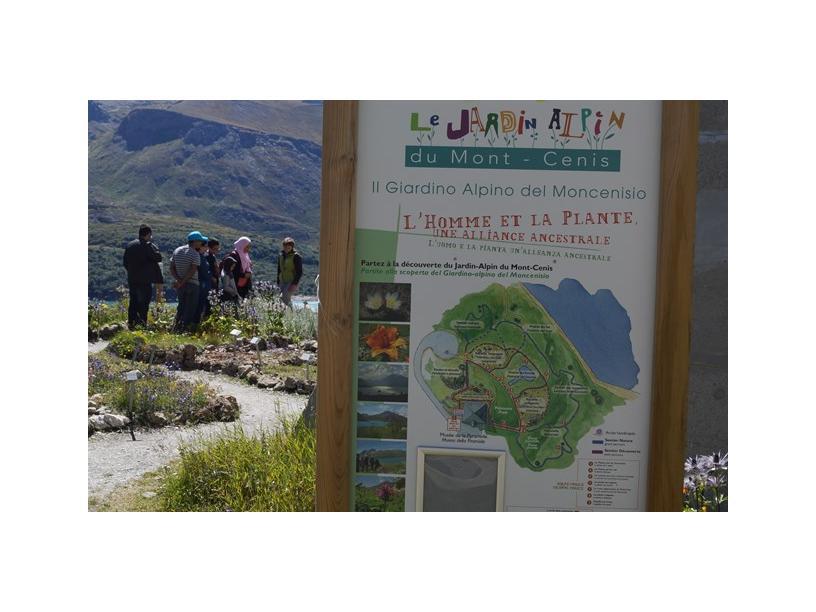 Les Edelweiss : Jardin Alpin du Mont-Cenis centre-edelweiss-vacance_95097115-.jpg